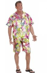 Hawaiian Man Costume